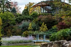 15 Best Things to Do in Oakville (Ontario, Canada) - The Crazy Tourist Natural Park, Natural Scenery, Visit Toronto, Stuff To Do, Things To Do, Ontario Parks, Oakville Ontario, Patio Design, Holiday Destinations