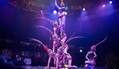 Escape into the majesty of the orient! Our beautiful Diabolo girls move gracefully, yet with extreme precision as they create intricate formations in Big Top, Cape Town, Celebration, Tours, Concert, Create, Girls, Beautiful, Daughters