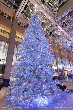 Giant Christmas Tree at the Landmark Mall in Central  HongKong (hkdigit-20131120-190116) (from Hong Kong Photo Gallery)