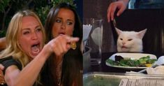 "The ""Woman Yelling at Cat"" meme is a mashup of two lesser memes—""Taylor Armstrong Crying and Pointing"" and ""Confused Cat at Dinner"". Cool Memes, Funny Cat Memes, Best Memes, Crying Meme, Cat Crying, Crying Girl, Woman And Cat Meme, White Cat Meme, Taylor Armstrong"