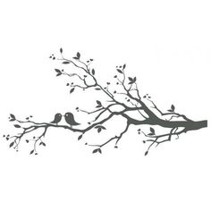 Love Birds On Branch X image vector clip art online, royalty ❤ liked on Polyvore featuring accessories, eyewear and sunglasses