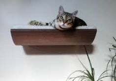 Image result for Akemi Tanaka wall-mounted cat bed