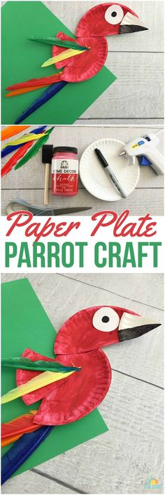 Looking for a fun rainforest craft or bird-themed activity for the kids? Try this cute parrot paper plate craft! Kids will love the bright colors and simplicity!