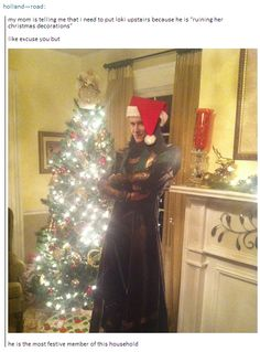 """My mom is telling me that I need to put Loki upstairs because he is """"ruining her Christmas decorations."""" Like excuse you but he is the most festive member of this household"""