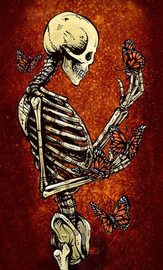 Metamorphosis by David Lozeau Skeleton & Butterfly Canvas Art Print