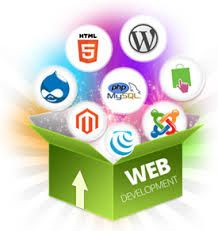 Website Promotion Company Noida @  http://www.newstep.in/web_designing.html