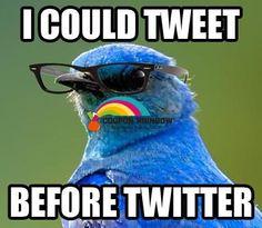 http://socialmediamarketing.couponrainbow.com/coupon-rainbow-wp-tweet-machine-review/