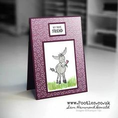 Email Cards, Stampin Up, Dark Purple Flowers, Ombre Background, Cards For Friends, Friend Cards, Stamping Up Cards, Animal Cards, My Stamp