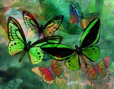 Green Butterfly Fantasy  ...by Melinda Bradshaw
