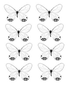 paper butterfly template - Google Search