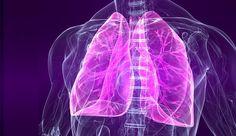 Atemvolumen und Ausdauer steigern: Mit diesem Lungentraining erhöhen SieIhr Atemvolumen und Ihr Lungenvolumen. Wir zeigen Ihnen wie es geht!