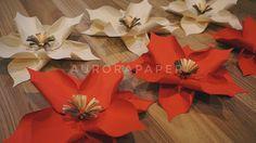 Paper Flower Jakarta Instagram: @aurorapaper