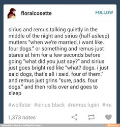 Yes Sirius and Remus are now my newest ship