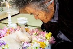 I'm so heartbroken to read the news that Fukumaru has crossed the rainbow bridge. I'll never forget this beautiful story between Fukumaru and Misa, the journey they spent together overlapping each other's lives. Rest in peace Fukumaru, watch over granny Misa from the rainbow bridge, the love continues... (Picture taken from https://www.facebook.com/YiYuanMeiDaiZi/?fref=photo)
