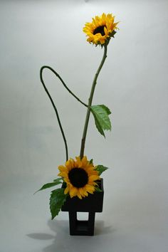 Ikebana - Keith Stanley - Space and Line