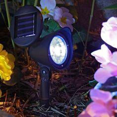 Misez sur les spots solaires multicolores pour vos extérieurs ! #outdoor