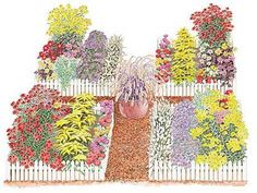 Great flowers in this plan for my garden.