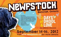 3 Days of Drool & Love... can you believe it? Newfstock in Bancroft, Ontario, Canada begins this September 2012. I know I'm going! http://www.newfstock.ca/