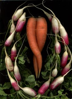 Roots. Vegetables as art.