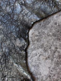 This autumn's textures.www.damaged-duchess.com Autumn, Texture, Fashion, Surface Finish, Moda, Fall Season, Fashion Styles, Fall, Fashion Illustrations