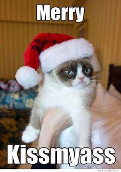 See more Grumpy Cat xmas memes http://www.personalise.co.uk/blog/grumpy-cat-christmas-memes/