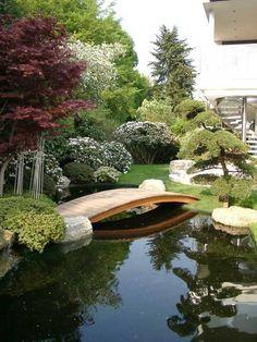 Elegant Koiteich, Moderner Teich Im Garten, Brücke über Gartenteich, Kleiner  Holzbrücke Im Garten Ein