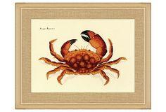 Red Crab Print on OneKingsLane.com