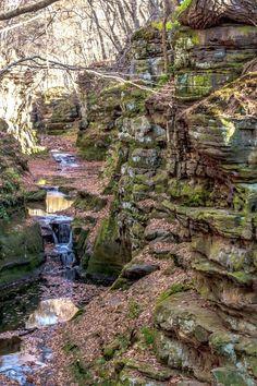 Hiking Wisconsin, Wisconsin Vacation, Wisconsin Dells, Wisconsin Getaways, Wisconsin Waterfalls, Door County Wisconsin, Zion Camping, Camping World, Camping Cabins