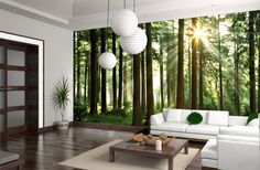 Fototapete Wald - Sunbeam through Trees