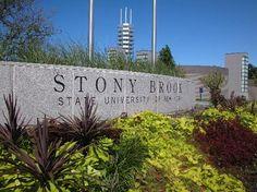 Stony Brook University Lands in Top 100 College List