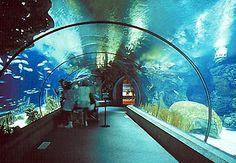 Omaha, NE- Henry Doorly Zoo