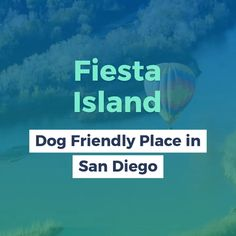 Fiesta Island: Dog Friendly Place in San Diego. San Diego is home to countless hiking trails, however sadly, a big number of them do not allow you to bring your dog. We did some study as well as discovered some of the best places where you as well as your dog can adventure with each other! Proceed along to learn where you and also your fuzzy pal can hike. #fiestaisland #sandiego #hikingtrails #california #hiking #doghiking #hikingtips Places In California, California Travel, Pet Travel Carrier, Travel Supplies, Hiking Tips, Travel Essentials, Dog Friends, The Good Place, San Diego