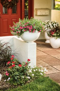 These crisp white containers are designed to intentionally match the retaining wall--which puts a greater emphasis on the colors provided by the plants--Supertunia Watermelon Charm and Supertunia White. White containers have a clean, orderly look about them and provide great curb appeal. Use mounded, trailing plants in low bowl shapes such as these.