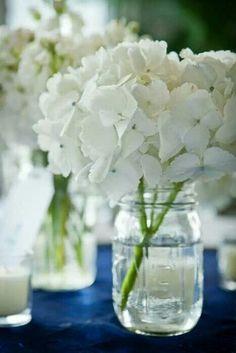 Single Hydrangea in a mason jar