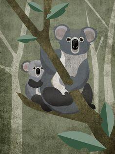 Koala Poster im Kunststoffrahmen Koala Illustration, Koala Craft, Animal Line Drawings, Australian Animals, Australian Art, Bear Art, Kawaii, Stuffed Animal Patterns, Grafik Design