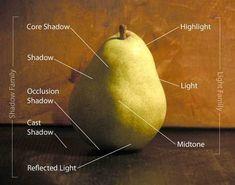 Richard Robinson's diagram for understanding light | ArtistsNetwork.com #StillLife #painting #art #OilPaintingStillLife