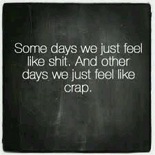 Some days we just feel like shit. And other days, we just feel like crap.