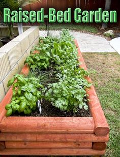 Tips for Making a Raised-Bed Garden #garen #gardening #RaisedBed