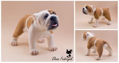 English Bulldog needle felted by Artist Elena Fedoryak.  Wow, she does wonderful work!