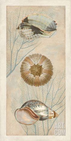 Ocean Companions II Art Print by Deborah Devellier at Art.com
