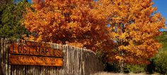 We have found 5 Texas State Parks to visit this fall for their brilliant fall foliage. These parks are all over the state. FREE Admission on November 7