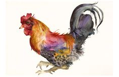 Rooster in Magenta and Gold