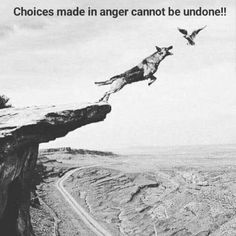 Positive Quotes : Choices made in anger cannot be undone. - Hall Of Quotes Quotable Quotes, Wisdom Quotes, True Quotes, Great Quotes, Qoutes, Motivational Quotes, Inspirational Quotes, Daily Quotes, Quotes Quotes