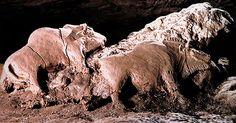 Ice Age Art - Tuc d'Audoubert Bisons