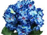 4 x Violet Hydrangea Bush   eFavorMart