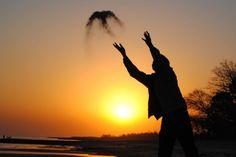 Cada uno imagina y piensa según la conciencia que tenga .......................... Mens sana in corpore sano .......................... Fot.: KTrabucco #colonia #uruguay #atardecer #sunset #pajaro #bird #arena #sand #sombras #shadows #playa #beach #oceano #ocean