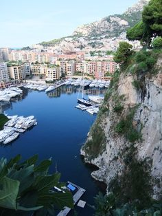 Monte Carlo, if only I had known him a few months sooner <3 we still have the rest of our lives to go though :)