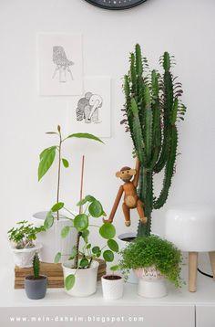 #urban #jungle #zimmerpflanzen #pflanzen #pilea #bubikopf #sukkulente #kaybojesen #monkey #kay #bojesen #glücksklee #flyingtiger #&tradition #avocadobaum #zeichnungen #art #zentangle #glücksbaum #tellerbaum #milklamp