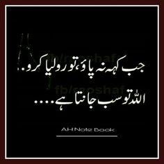 dairy milk bilkul urdu quotes sayings pinterest