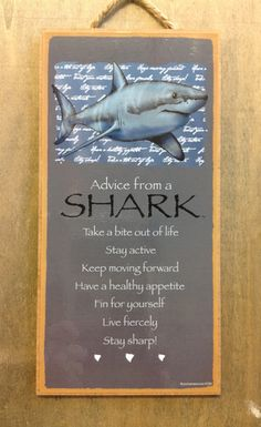43 Best Shark Quotes Images Great White Shark Marine